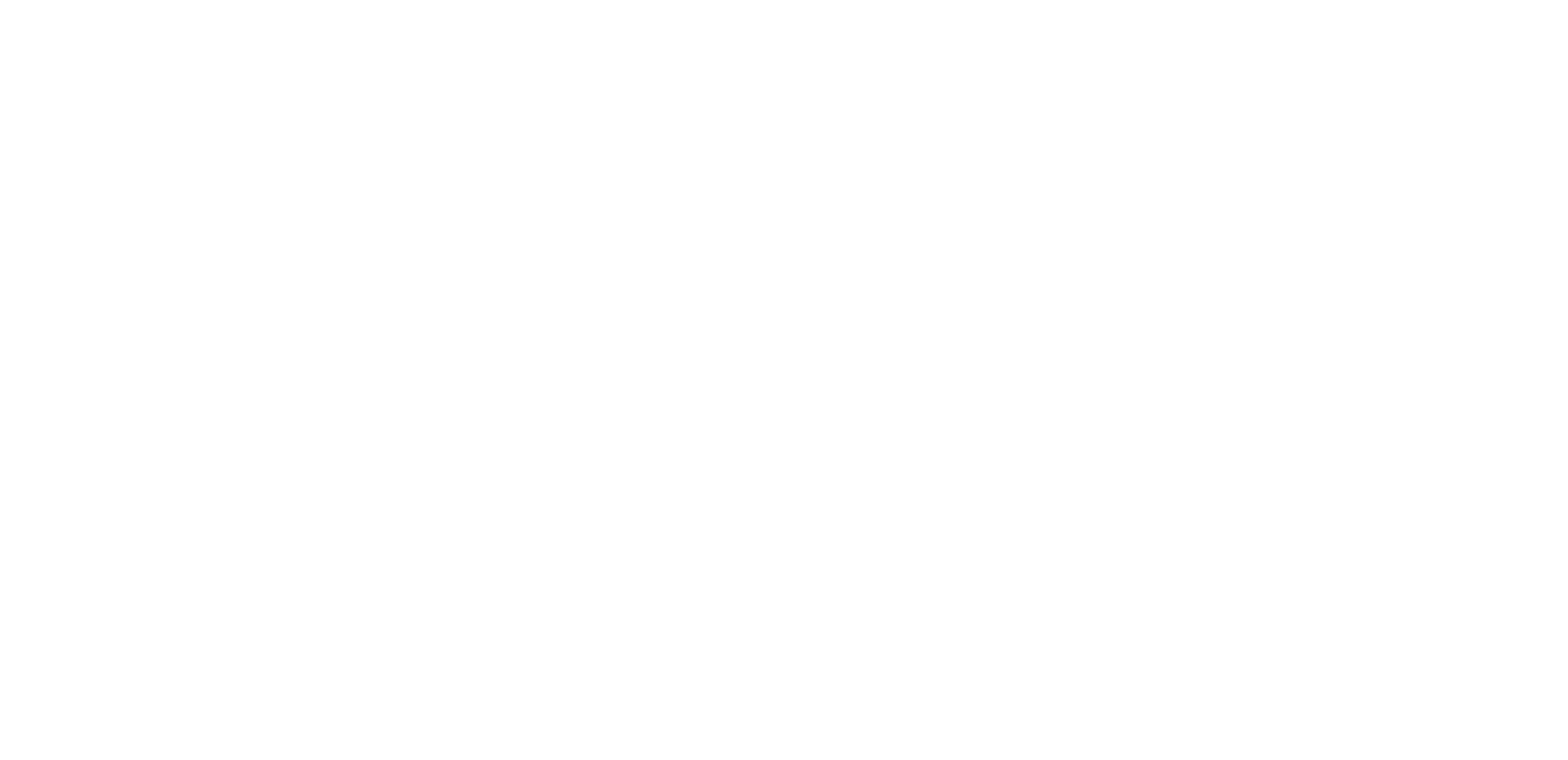 wellness by blair logo